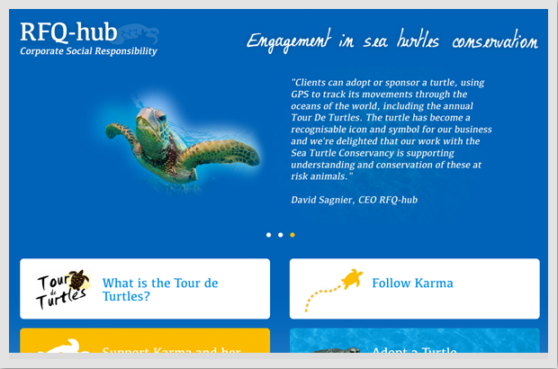 CSR sea turtles Website